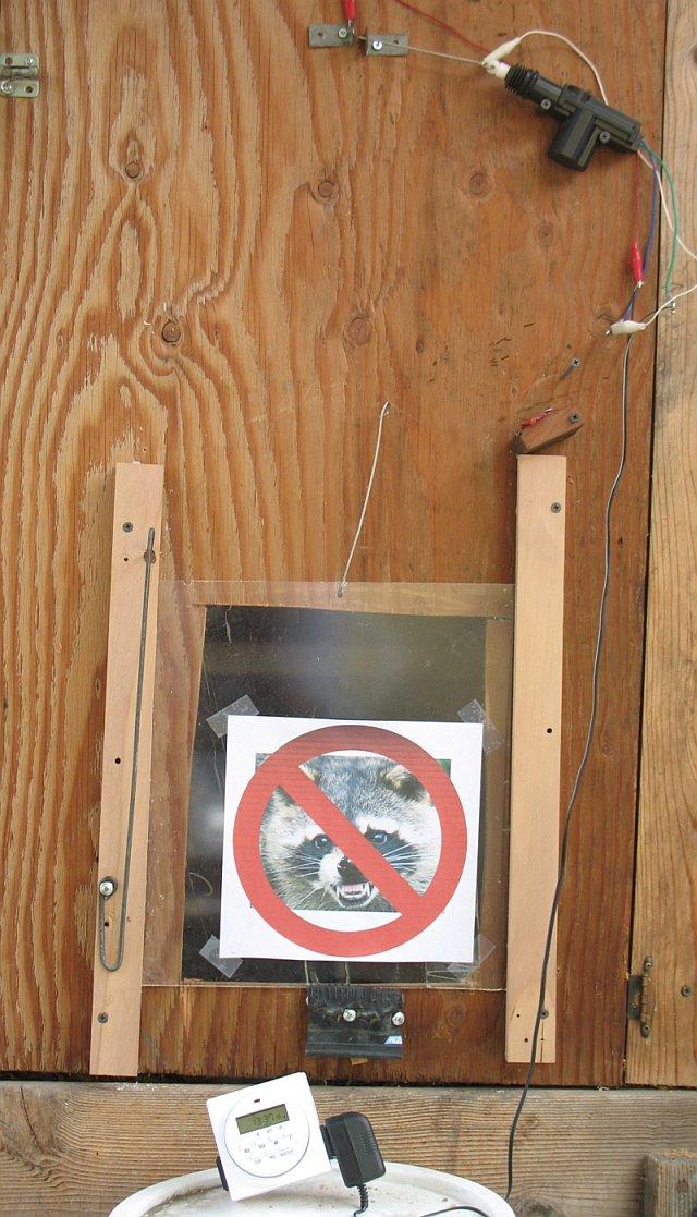 auto chicken coop door closed